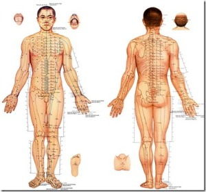 lamina acupuntura 2